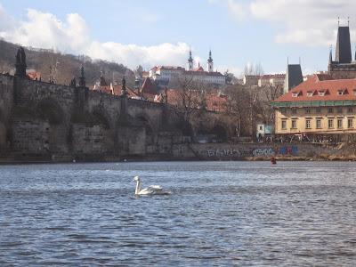 Prague Venice Historical Boat Trips