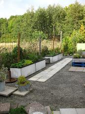 Köksträdgård (länk)
