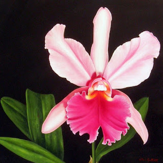 Cuadros Orquideas Pintados Oleo