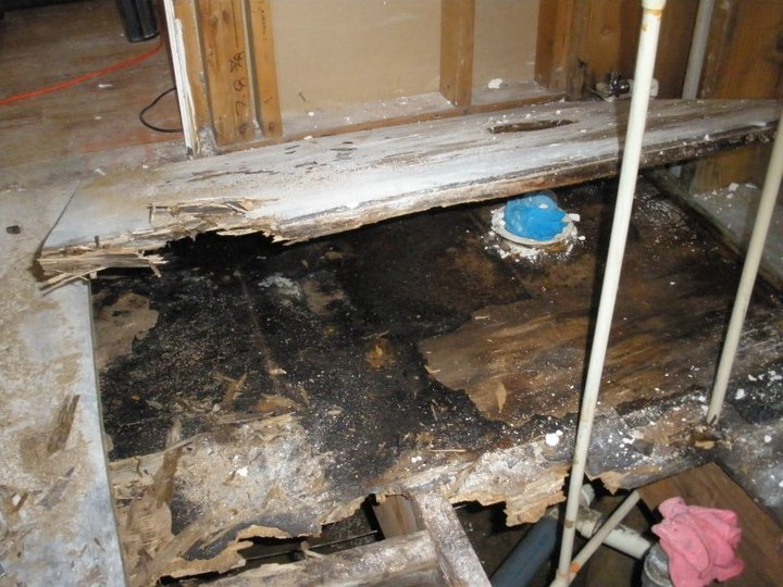 How To Replace A Bathroom Subfloor 28 Images Replacing