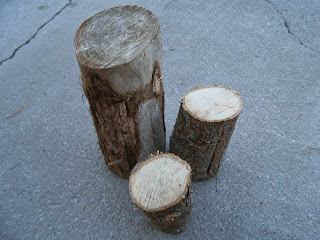 cut logs for Hypertufa mushrooms