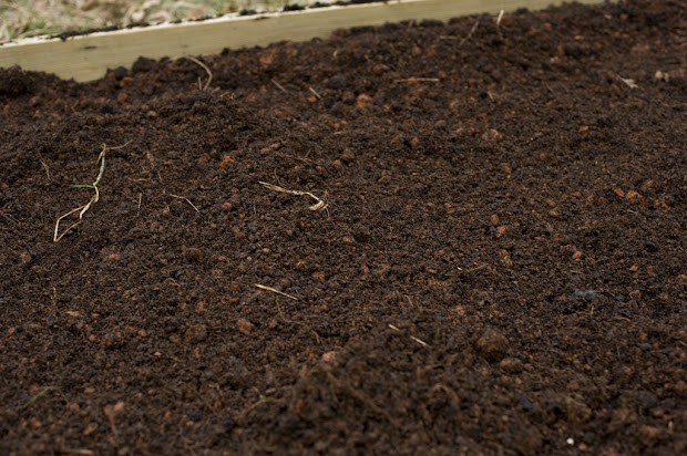 impact of chemical fertilizers