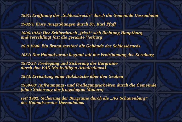 Geschichte der Schauenburg: Neuzeit