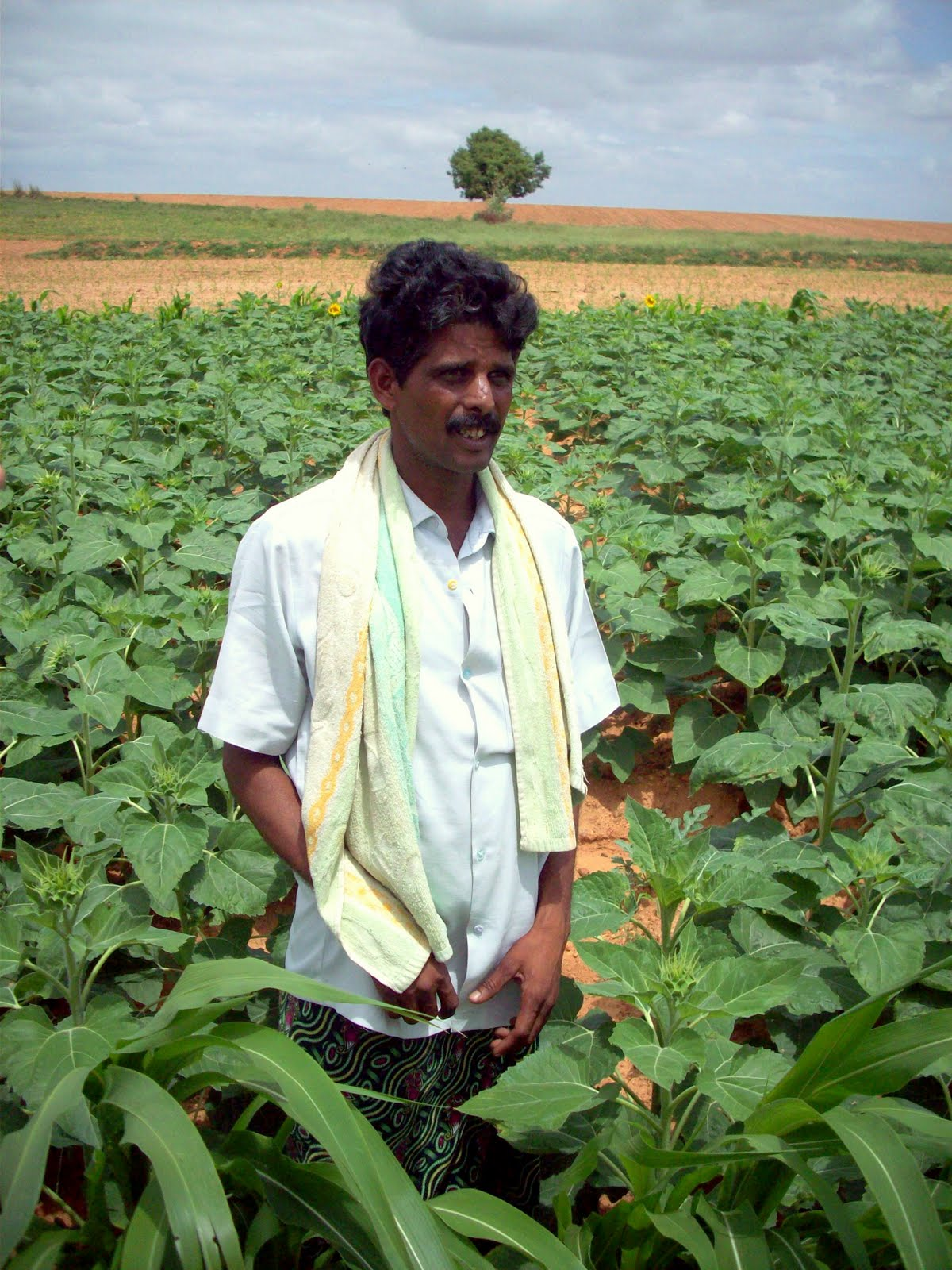 geo peasant farming Cbse 9 history || peasants and farmers - 5 || opium production in india free e-book how to get rid of exam fear   to buy.