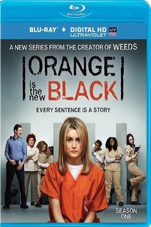 Orange Is the New Black S01 All Episode [Season 1] Complete Dual Audio Download 480p