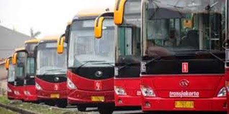 bus trans