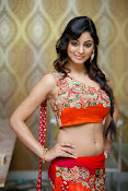 Shilpi Sharma Photos at Trisha Pre launch fashion Show-thumbnail-20