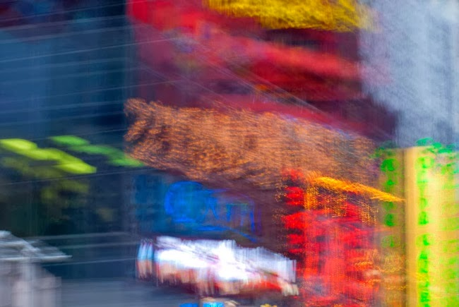 Renato Cerisola. E-Motion: Motus Animae. Fotografía | Photography