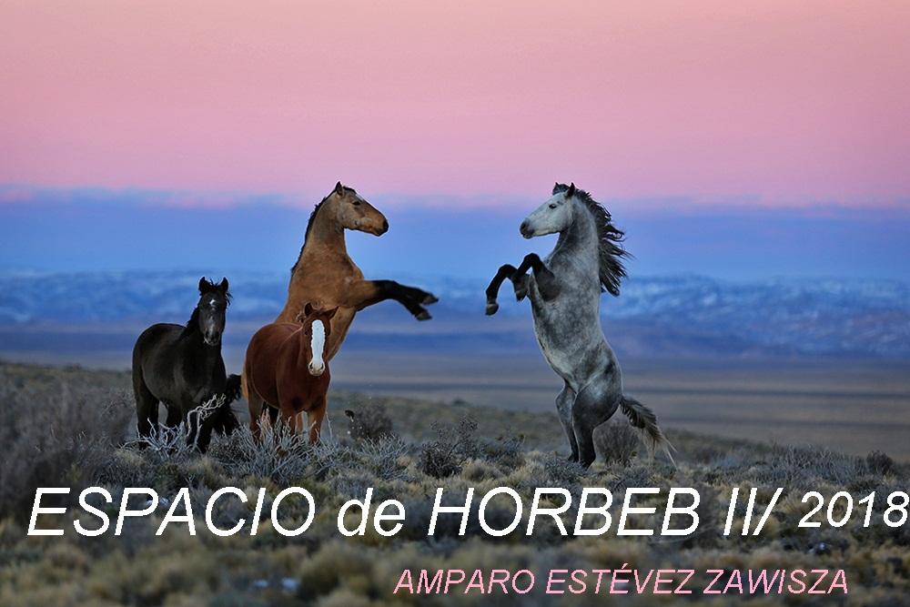 ESPACIO DE HORBEB II_AmPaRo EsTeVeZ ZAWISZA
