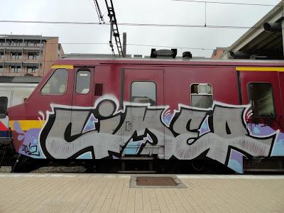 CIMER - NSC