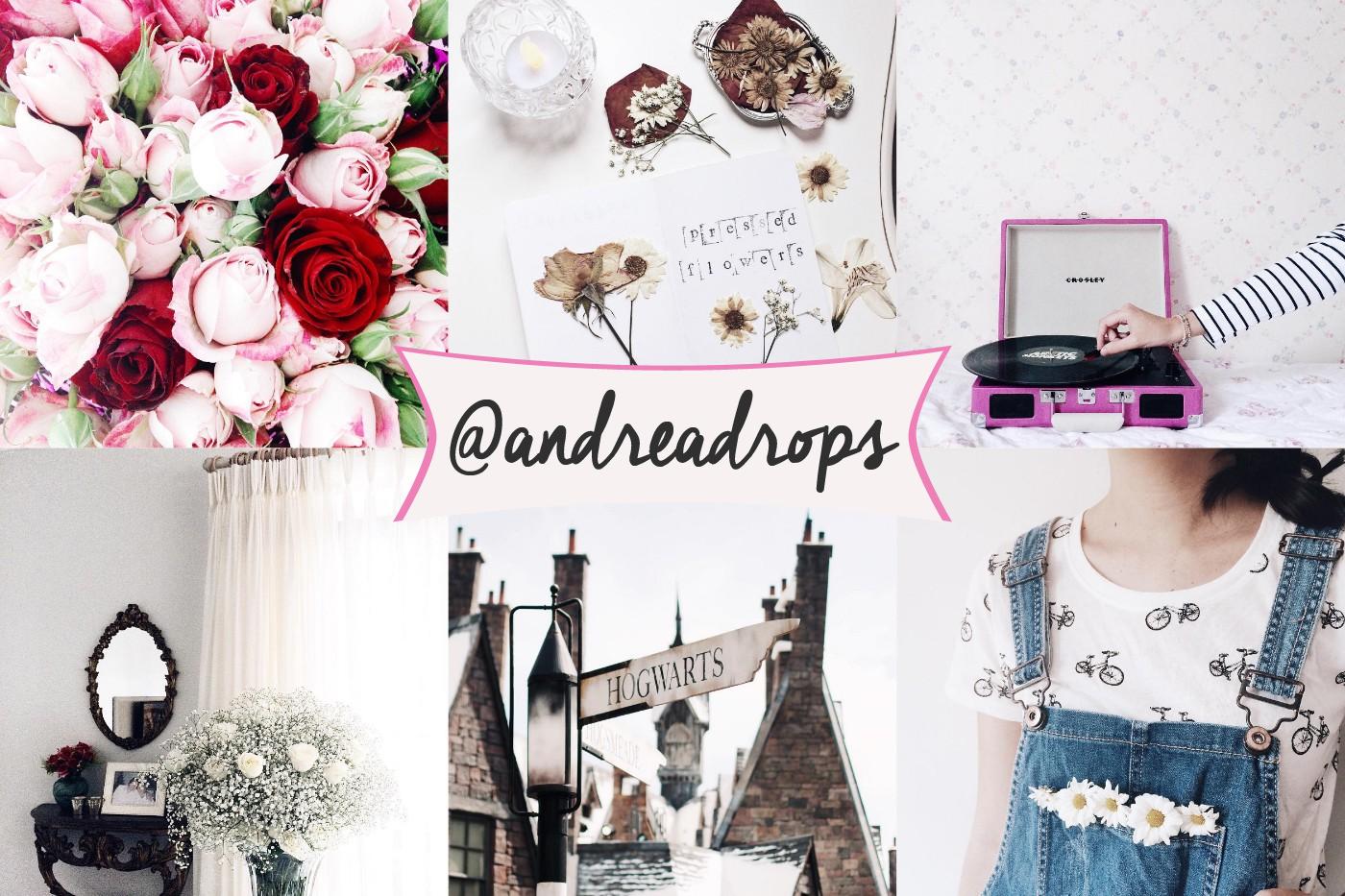 feeds, instagram, inspiração, fotografia