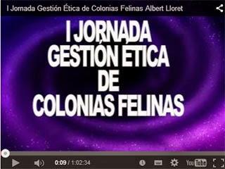 I Jornada Gestión Ética de Colonias Felinas (Madrid)