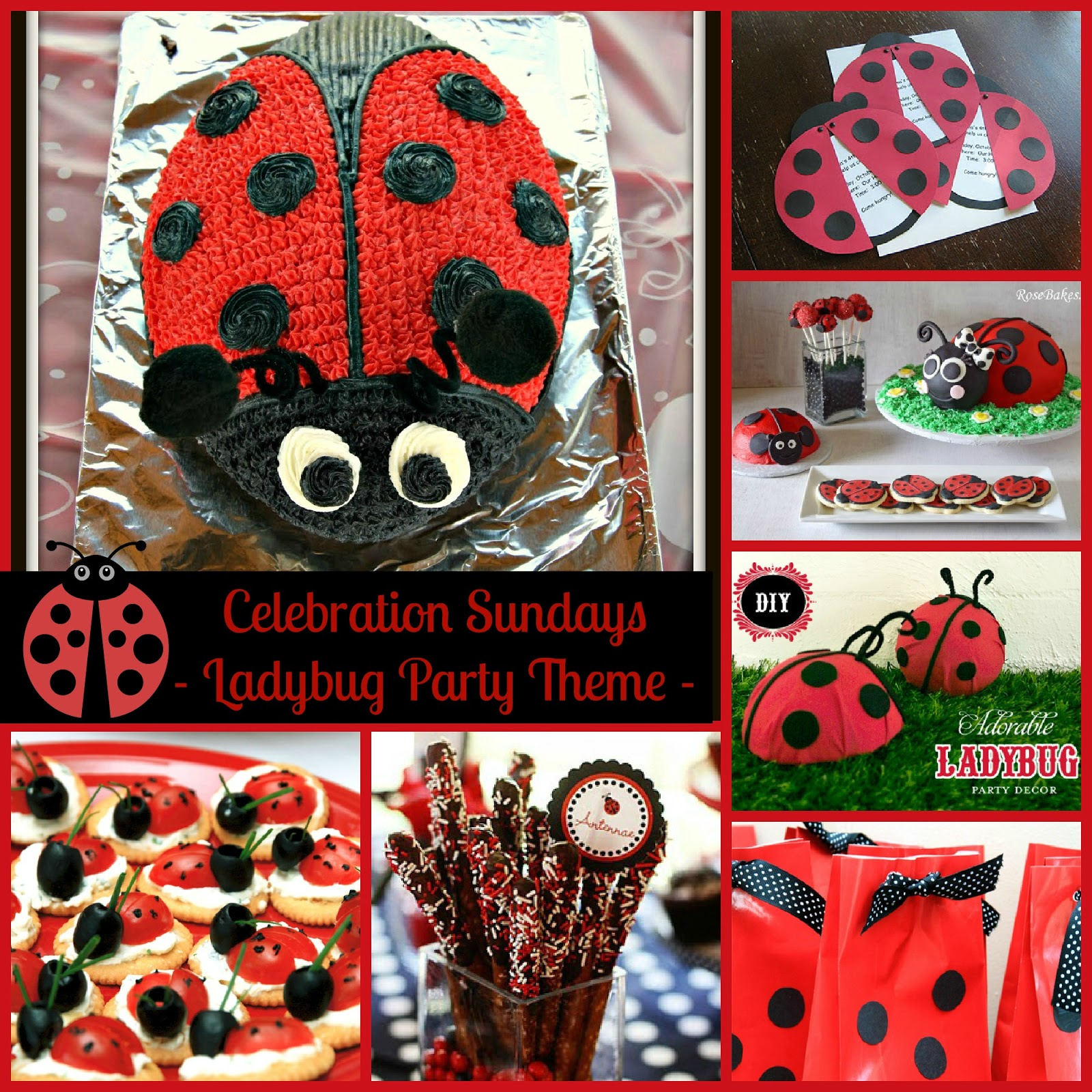The mandatory mooch celebration sundays ladybug party theme celebration sundays ladybug party theme solutioingenieria Choice Image