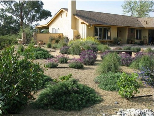 Desert yard landscaping ideas car interior design - Front yard desert landscaping ...