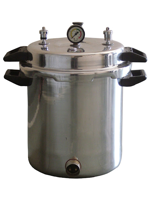 Lab scale autoclave
