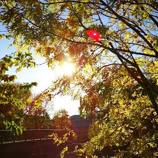 Herbst Wupper Brücke Leichlingen