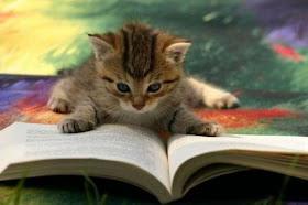 Khusyuk Membaca :-)