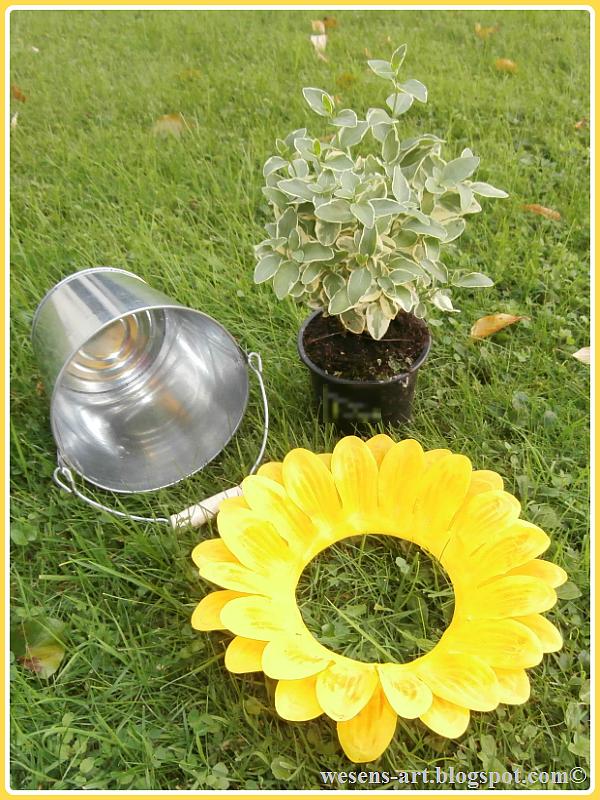 sunny potted plant   wesens-art.blogspot.com