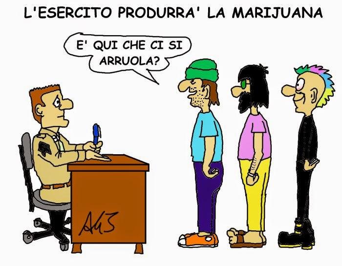 cannabis, esercito