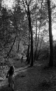 Des enfants courent dans la forêt, ils ont fini la journée de tournage et rejoignent leurs parents.