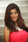 actress Gayatri glamorous photos-thumbnail-20