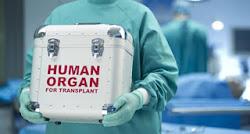 Перелить кровь - значит съесть кровь или пересадить орган?