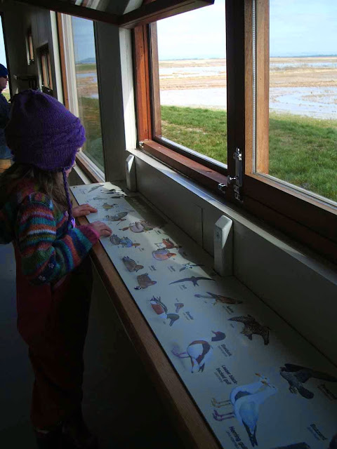 inside the new bird hides at steart marsh wetlands reserve in somerset