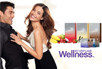 como emagrecer com a wellness