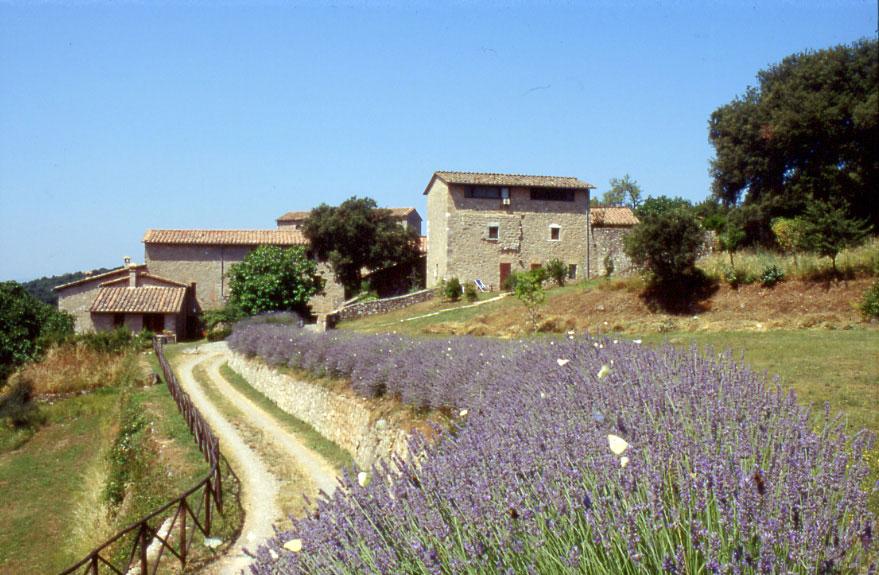 Matrimonio In Un Borgo Toscana : Hotel borgo pretale un matrimonio romantico alle porte di