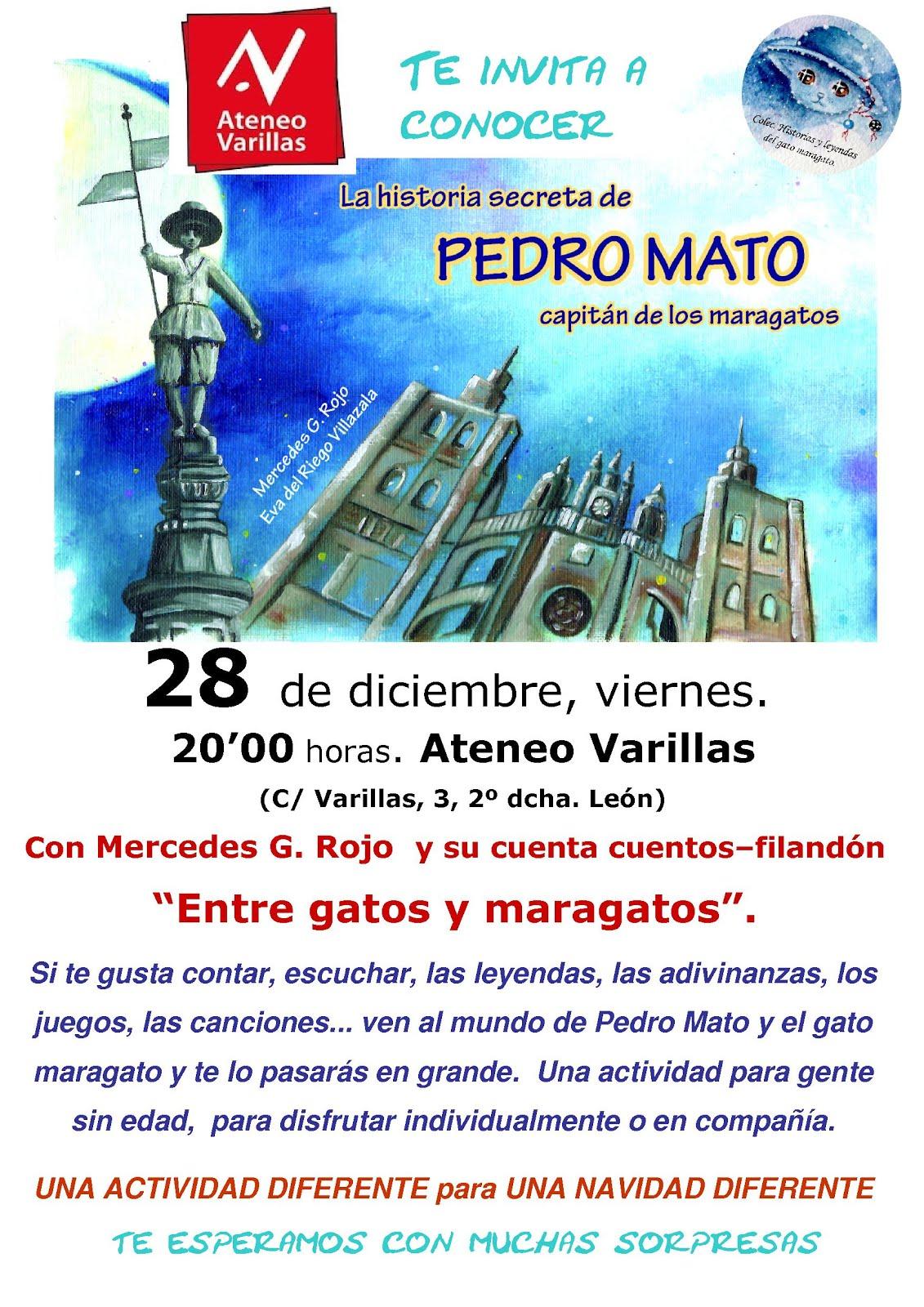 Particular filandón entre el gato maragato y Pedro Mato