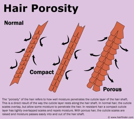 High Porous Natural Hair