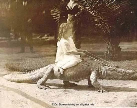 2 Δείτε:Σοκαριστικές εικόνες με παιδιά και επικίνδυνα ζώα!!!