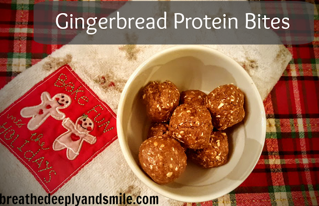 gingerbread-protein-bites-sunwarrior1
