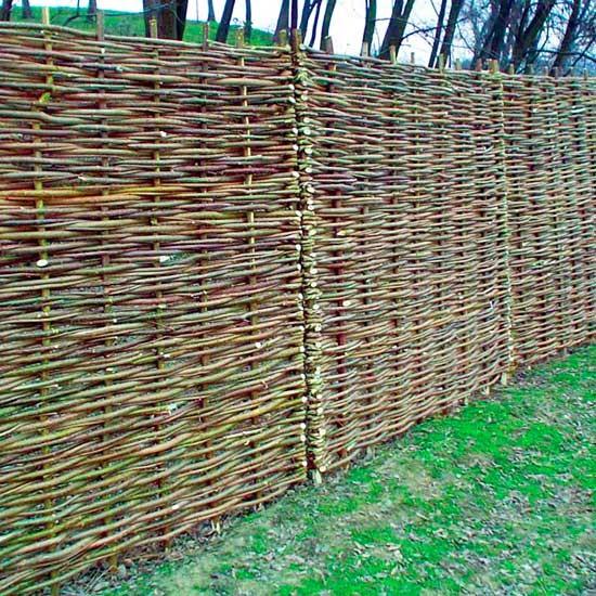 trelica bambu jardim : trelica bambu jardim:Um jardim para cuidar: Treliças e paineis no seu jardim