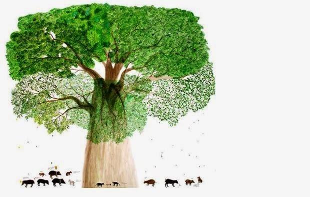 Tree of life and abundance, artist Abel Rodriguez, bron tropenbos.org