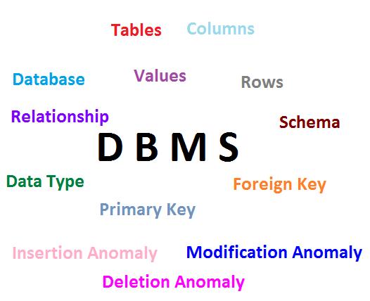 Learning Walkthrough: Database Management System(DBMS)
