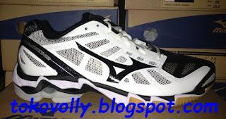 Sepatu Volly Terbaru dan Termurah 00886cff86