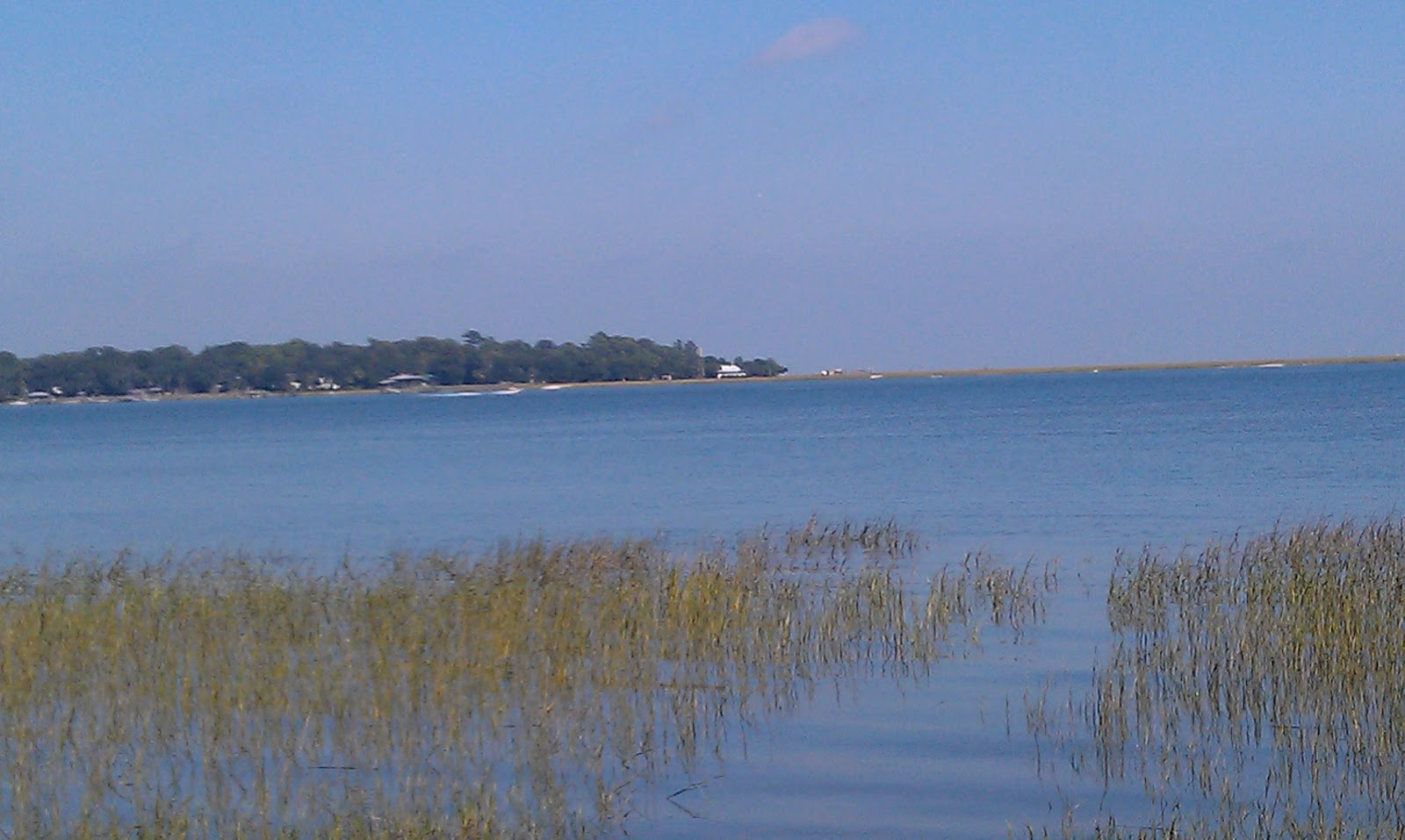 The Simmons Saga Skidaway Island Georgia