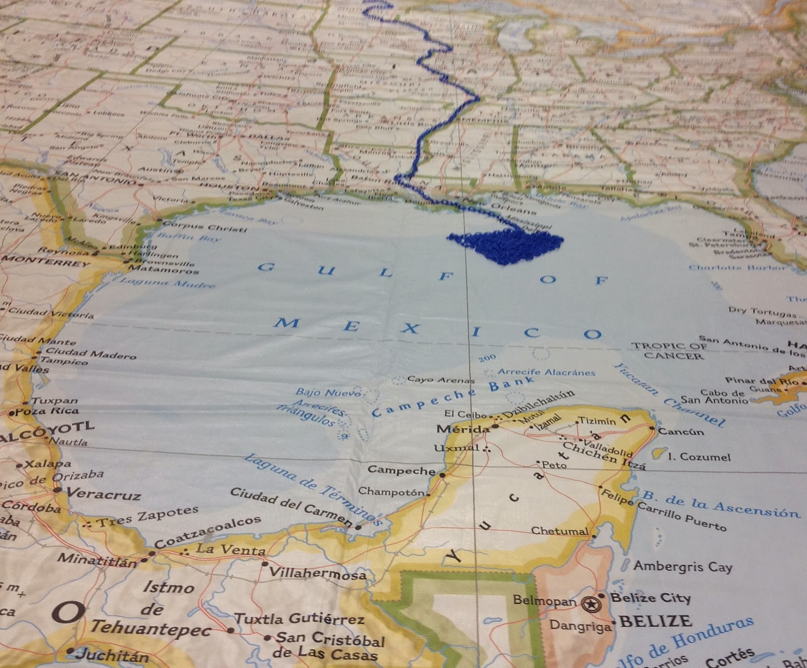 Mrs yollis classroom blog national geographics giant map of below we see the flow of the mississippi river the mighty miss begins at lake itasca minnesota and the mississippi delta is found in louisiana gumiabroncs Gallery