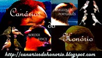 O meu outro blog