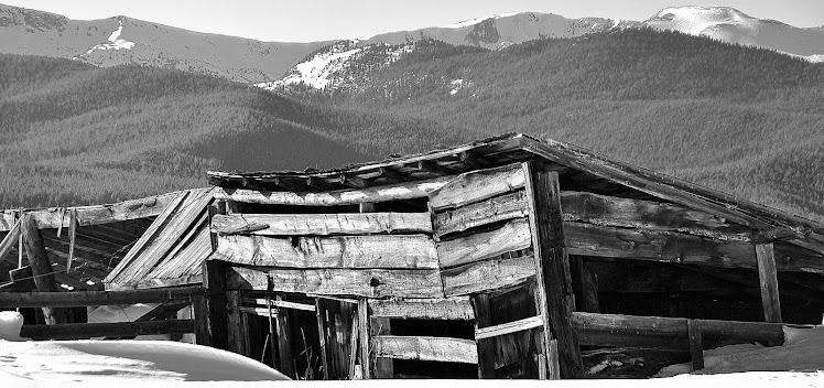 colorado black and white