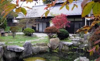 lịch sử phát triển bonsai