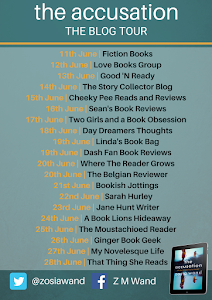 Blog Tour - The Accusation