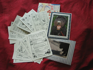 Photo of 12 black-and-white postcards, fanned out in two piles of six and two glossy photo cards, one of a muddy black furry dog and one of a little black puppy pouncing in the snow. A book peeks out from under the other items. The background is burgundy cloth.