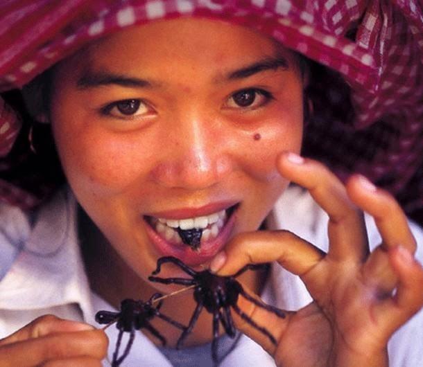 أغرب الأكلات في العالم - عناكب البيتسي