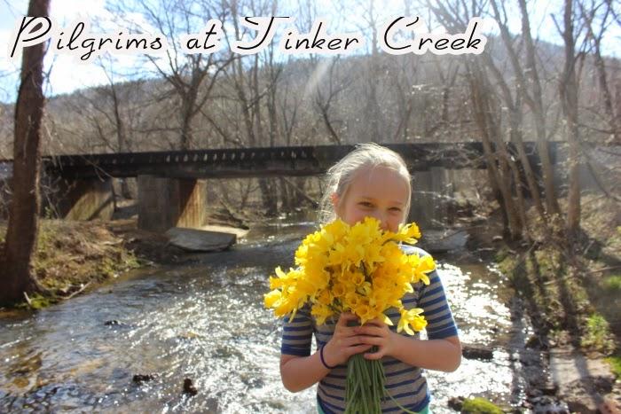 Pilgrims at Tinker Creek