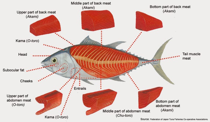 Ihm or hotel management notes fish cookery for 2nd sem for Is fish considered meat