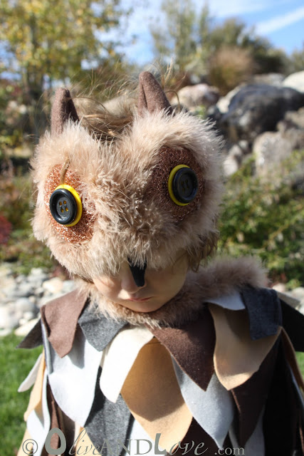 parenting country living owl costume