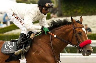 Goldencents, with regular rider Kevin Krigger, a good bet for this year's Kentucky Derby