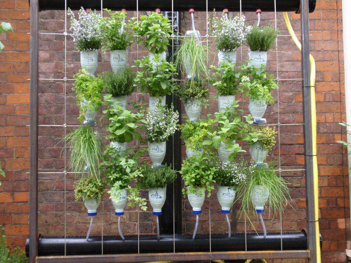 Boutiquedehuerta huertas verticales iv para la ventana cuando ten s sol en una pared para - Como hacer jardines verticales ...